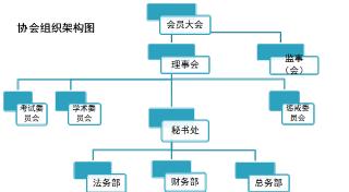 协会组织架构图